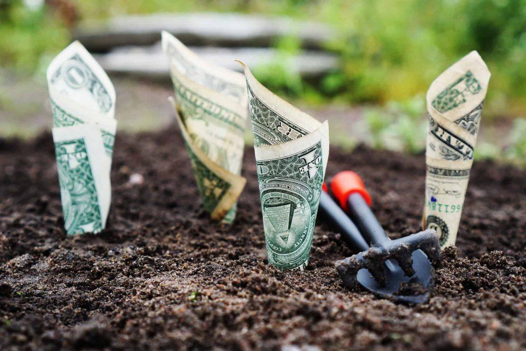 Dollar bills planted in dirt, representing saving for retirement at 50
