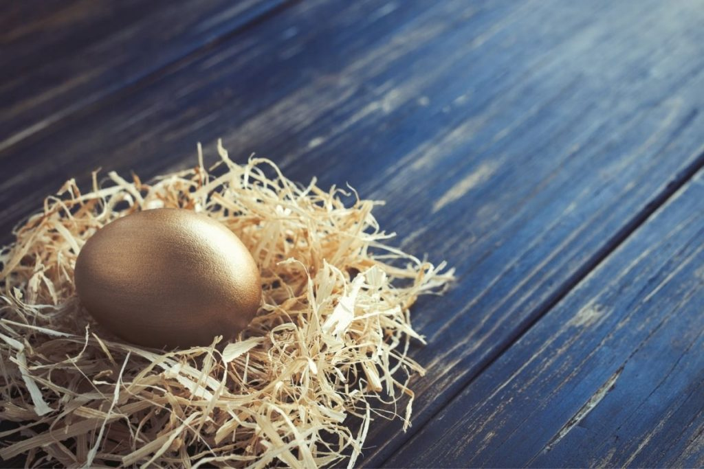 Gold nest egg representing question: is it a good idea to borrow from your 401(k)?